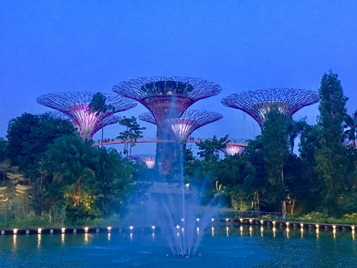 Singapore – love at first sight